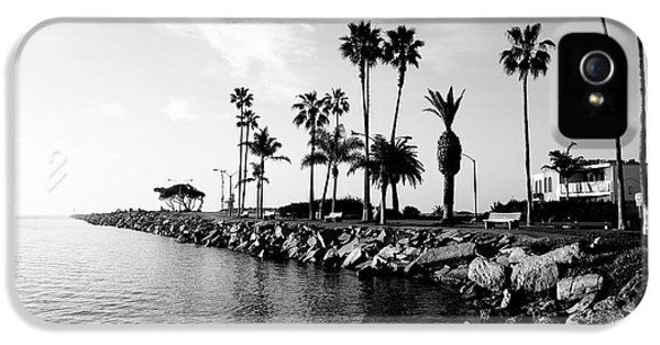 Balboa iPhone 5 Cases - Newport Beach Jetty iPhone 5 Case by Paul Velgos