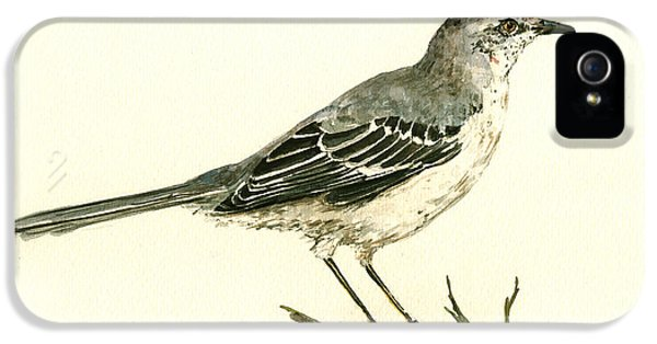 Northern Mockingbird IPhone 5 Case by Juan  Bosco