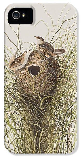 Wren iPhone 5 Case - Nuttall's Lesser-marsh Wren  by John James Audubon