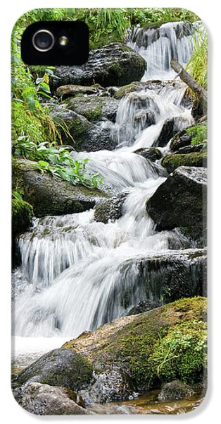 Oasis Cascade IPhone 5 Case by David Chandler