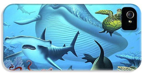 Hammerhead Shark iPhone 5 Case - Ocean Life by Jerry LoFaro