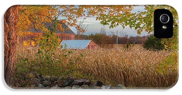 IPhone 5 Case featuring the photograph October Morning 2016 by Bill Wakeley