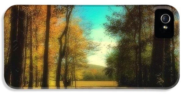 October Path IPhone 5 Case by Steven Gordon
