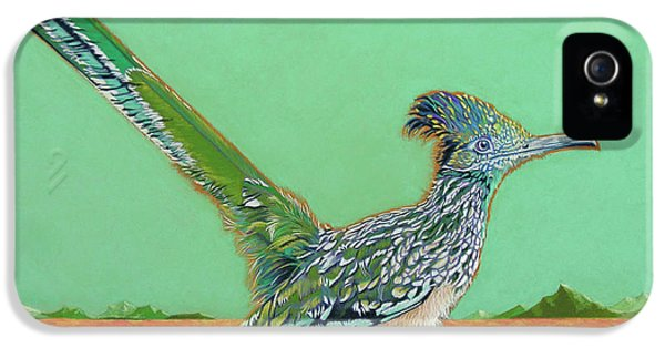 Roadrunner iPhone 5 Case - Of Two Minds by Tracy L Teeter