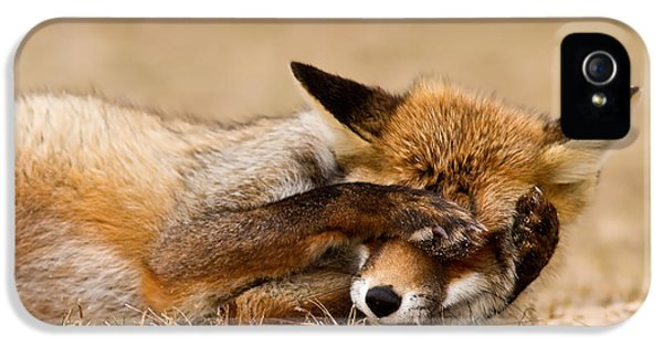Oh No, You Didn't - Funny Fox IPhone 5 Case