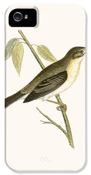 Olivaceous Warbler IPhone 5 Case by English School