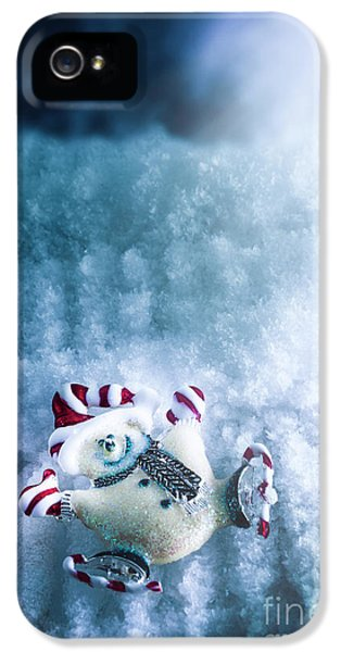 On The Ice IPhone 5 Case by Jorgo Photography - Wall Art Gallery