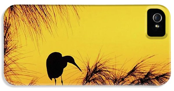 One Of A Series Taken At Mahoe Bay IPhone 5 Case