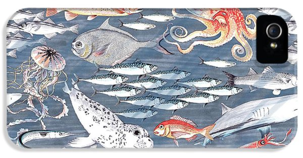 Open Sea, Repeat Pattern IPhone 5 Case by Jacqueline Colley