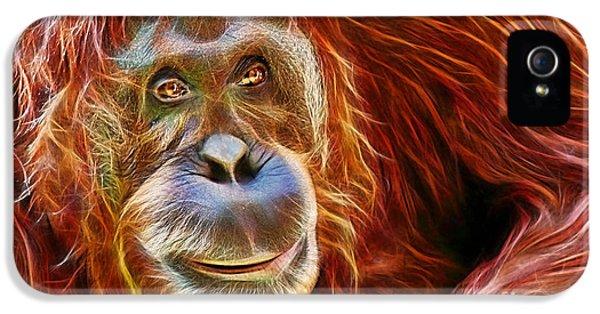 Orangutan Collection IPhone 5 Case