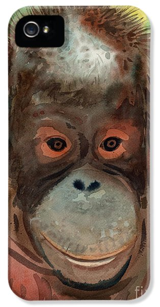 Orangutan IPhone 5 / 5s Case by Donald Maier
