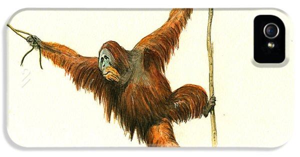 Orangutan IPhone 5 / 5s Case by Juan Bosco