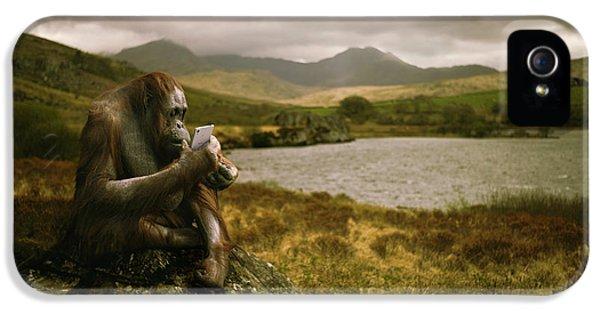 Orangutan With Smart Phone IPhone 5 / 5s Case by Amanda Elwell