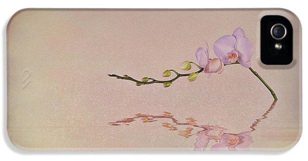 Orchid Blooms And Buds IPhone 5 Case by Tom Mc Nemar