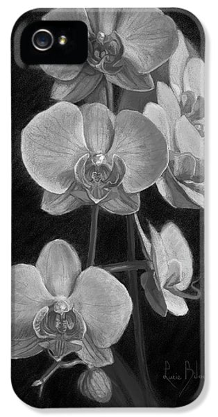 Orchids - Black And White IPhone 5 Case by Lucie Bilodeau