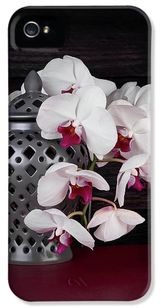 Orchid iPhone 5 Case - Orchids With Gray Ginger Jar by Tom Mc Nemar
