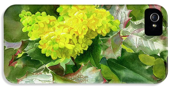 Oregon Grape Blossoms With Leaves IPhone 5 Case by Sharon Freeman