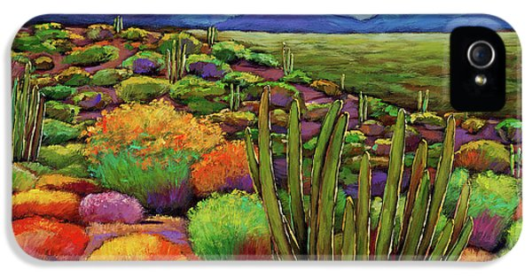 Landscape iPhone 5 Case - Organ Pipe by Johnathan Harris