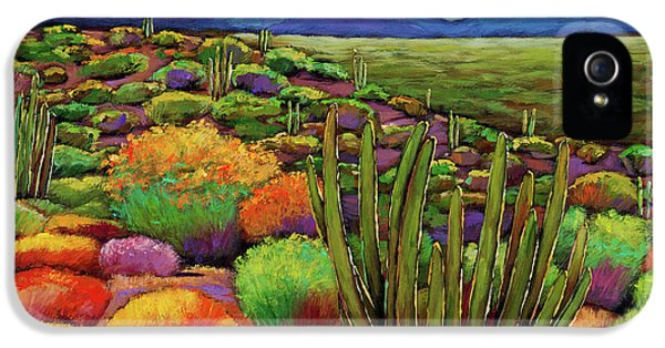 Organ Pipe IPhone 5 Case by Johnathan Harris