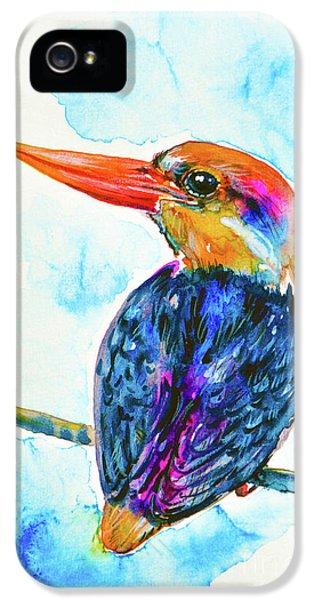 Oriental Dwarf Kingfisher IPhone 5 Case by Zaira Dzhaubaeva