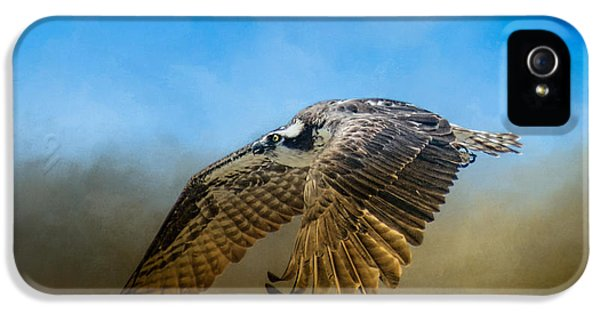 Osprey Over Pickwick IPhone 5 Case by Jai Johnson