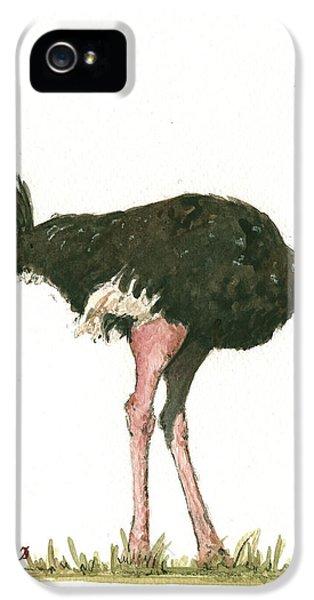 Ostrich Bird IPhone 5 / 5s Case by Juan Bosco