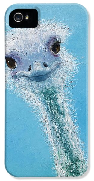 Ostrich Painting IPhone 5 Case by Jan Matson