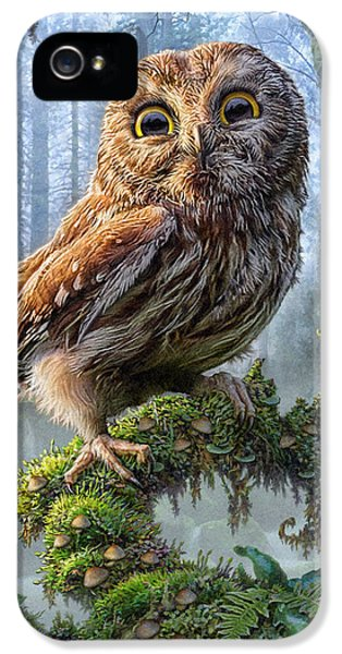 Owl Perch IPhone 5 Case by Phil Jaeger