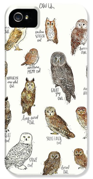 Owls IPhone 5 Case by Amy Hamilton