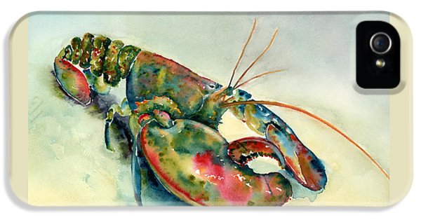 Painted Lobster IPhone 5 Case
