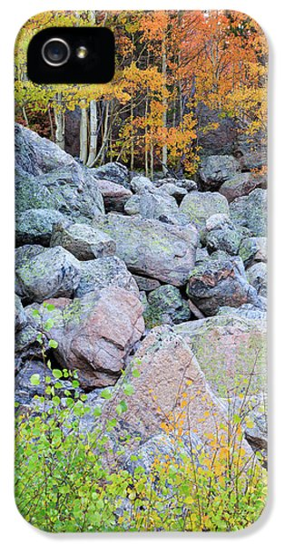 IPhone 5 Case featuring the photograph Painted Rocks by David Chandler