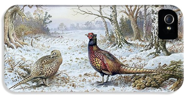 Pheasant iPhone 5 Case - Pair Of Pheasants With A Wren by Carl Donner