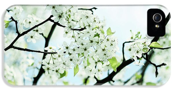 IPhone 5 Case featuring the photograph Pale Pear Blossom by Jessica Jenney