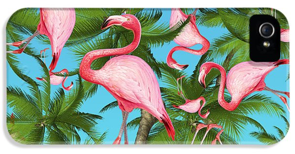 Palm Tree IPhone 5 Case by Mark Ashkenazi