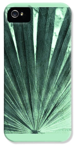 Palmetto Abastract No. 4 IPhone 5 Case by Marvin Spates