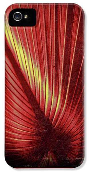Palmetto Embrace Red Yellow IPhone 5 Case by Marvin Spates