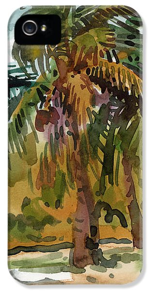 Palms In Key West IPhone 5 Case