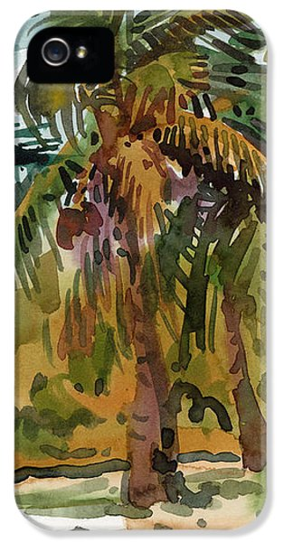 Palms In Key West IPhone 5 Case by Donald Maier