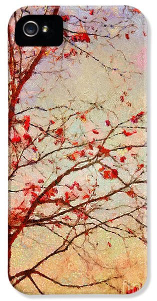 Trees iPhone 5 Cases - Parsi-Parla - d04c03t01 iPhone 5 Case by Variance Collections