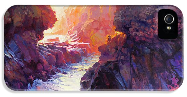 Pacific Ocean iPhone 5 Case - Passage by Steve Henderson