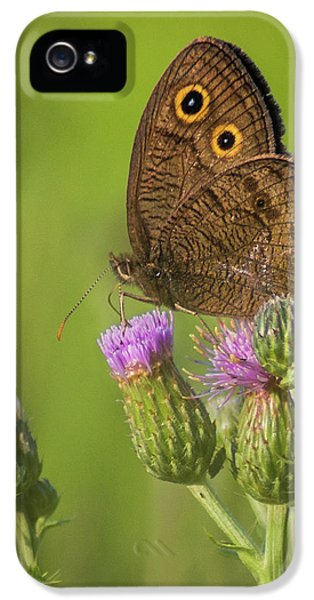 IPhone 5 Case featuring the photograph Pauper's Throne by Bill Pevlor