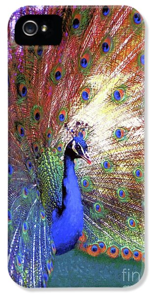 Peacock Wonder, Colorful Art IPhone 5 Case by Jane Small
