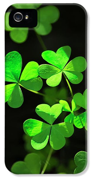 Perfect Green Shamrock Clovers IPhone 5 Case by Christina Rollo
