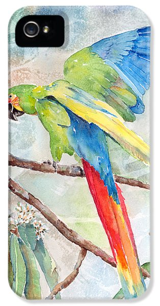 Perfect Landing IPhone 5 / 5s Case by Arline Wagner