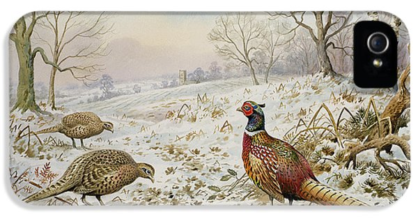 Pheasant And Partridges In A Snowy Landscape IPhone 5 Case by Carl Donner
