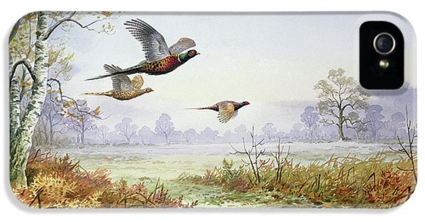 Pheasants In Flight  IPhone 5 Case by Carl Donner