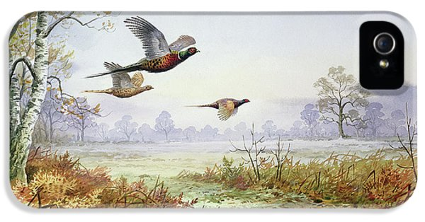Pheasants In Flight  IPhone 5 / 5s Case by Carl Donner