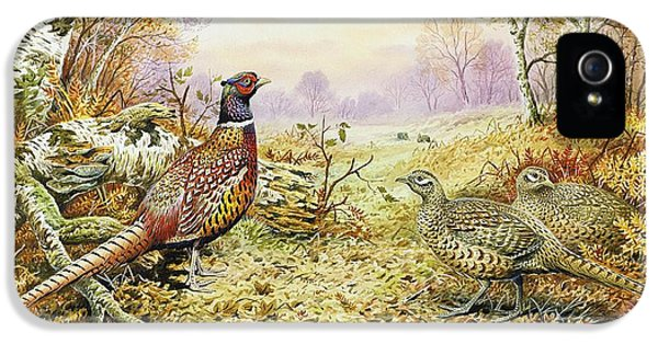 Rabbit iPhone 5 Case - Pheasants In Woodland by Carl Donner