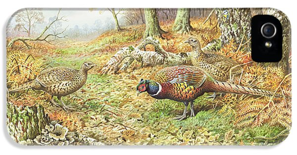 Pheasants With Blue Tits IPhone 5 / 5s Case by Carl Donner