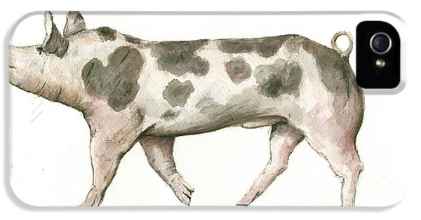 Pig iPhone 5 Case - Pietrain Pig by Juan Bosco